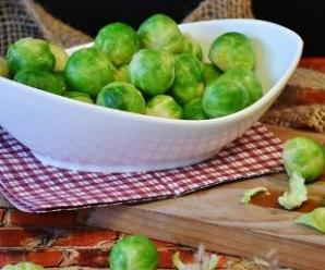 Sprouts: Power Foods for Health at Every Stage of Life