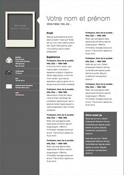 professional modern for free iwork