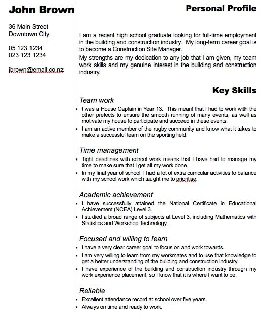 modern curriculum vitae template for pages free iwork templates