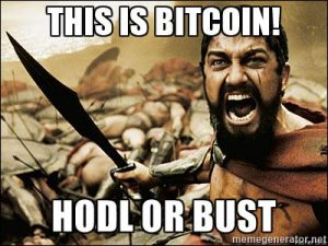 """HODL"" - A popular mistyping of ""HOLD"", generally a simple an effective strategy with bitcoin."