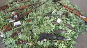 Guns and Weed