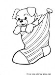 Puppy in christmas stocking coloring pages for kids