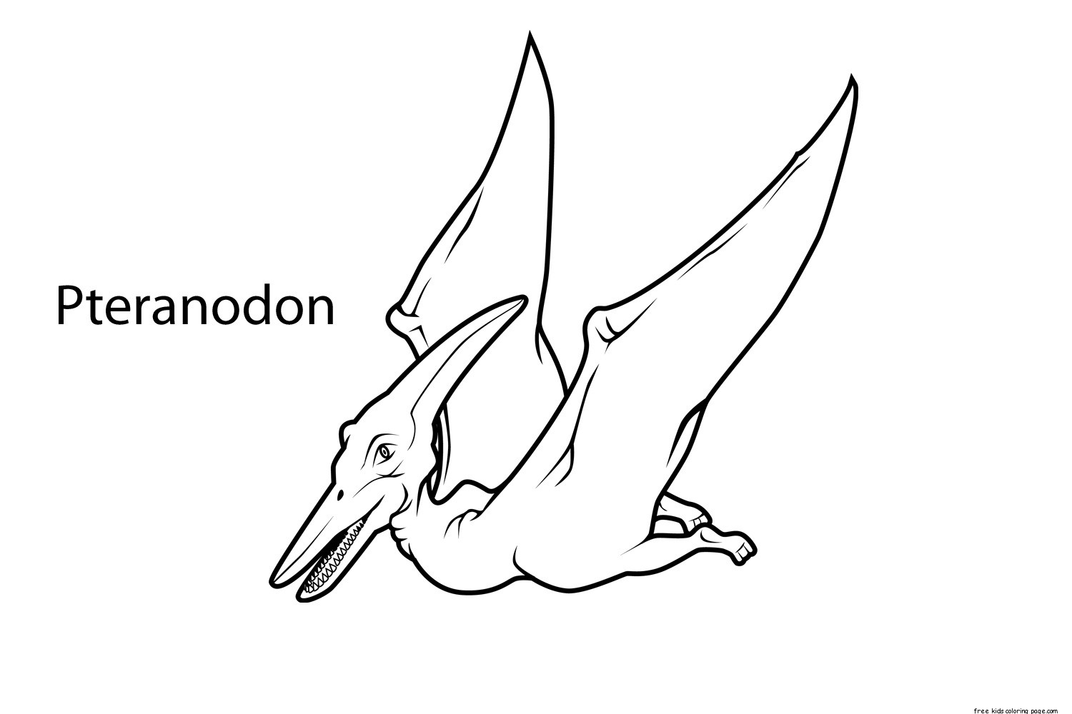 Printable Pteranodon Dinosaur Coloring Pages For Kidsfree Printable Coloring Pages For Kids