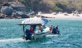 Panga rescue in Chamela