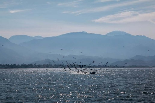 Beautiful morning for fishing in San Blas