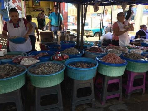 Shrimp capitol of the Baja