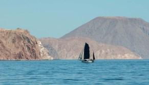 S/V Bertie under full sail
