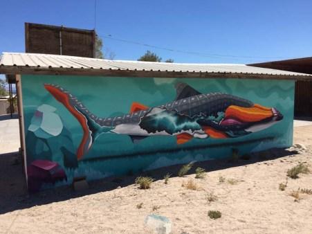 Wall art in BLA