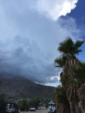Afternoon thunderstorms over the Village
