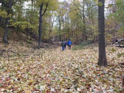 Family hike around the neighborhood