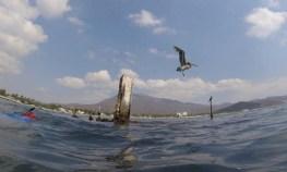 Snorkeling the wreck in Santiago Bay (see video below)