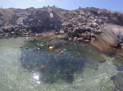 Fishing net left behind :(