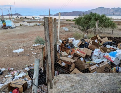Can you find the dog in this picture of of the trash heap?