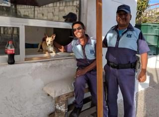 The tireless security guards at the Fonatur yard