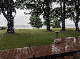 A little summertime rain - not a bad place to relax and enjoy