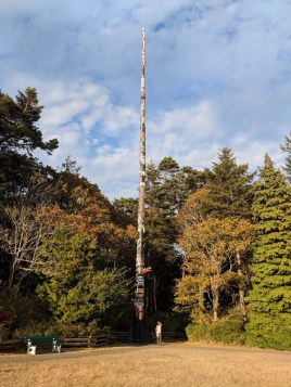 World's tallest free-standing totem in Beacon Hill Park