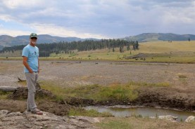 Checking out the bison herd along the river