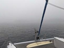 Foggy Chamela morning