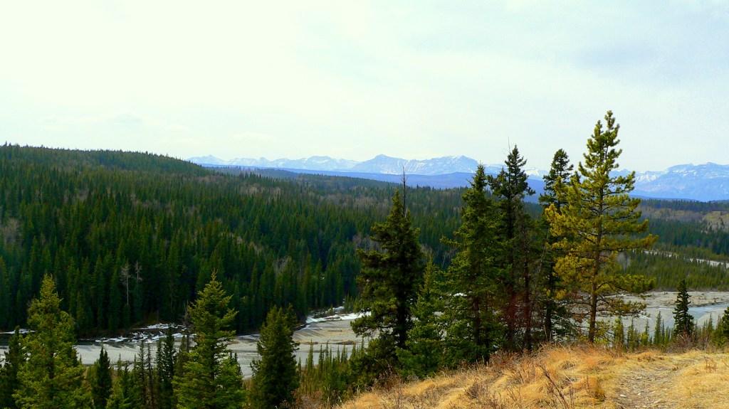 overlooking the Big Hill Creek Valley