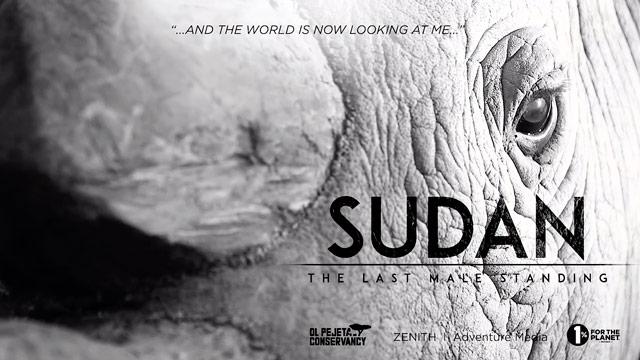 Sudán, El Último Macho en Pie