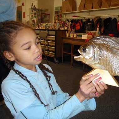 Student examines preserved fish during a school assembly