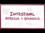 Intestinal atresia & stenosis - causes, symptoms, diagnosis, treatment, pathology