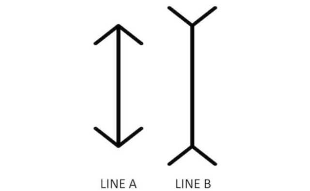 Melyik vonal a hosszabb?