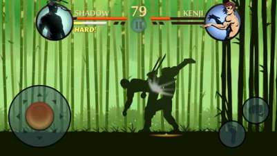 Shadow Fight 2 MOD APK gameplay