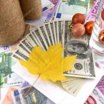 Freemoto - Oferta kredytowa na imprezę na koniec roku w calej Polski