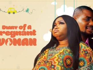 Diary of a Pregnant Woman (2018)