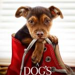 A Dogs Way Home (2019) Full Movie Mp4 Download