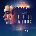 Little Woods (2019) mp4