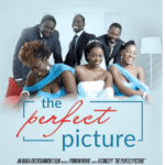 Download Movie The Perfect Picture Mp4