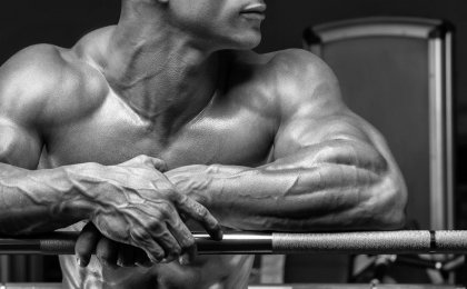 10 muscle building tips