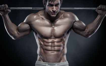 top muscle building exercises