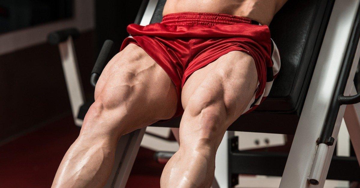A Muscle Building Program forHuge Legs