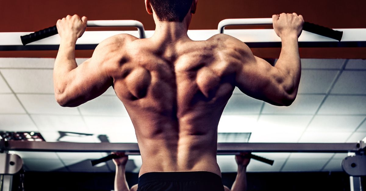 """Isometric Pull Ups to Get the """"V-Shape"""" Back and Body"""