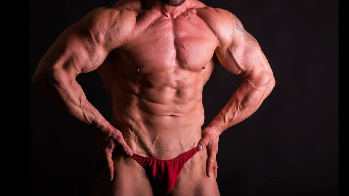 "Visual Impact Muscle building doesn't go for the ""fluffy"" muscle head look."