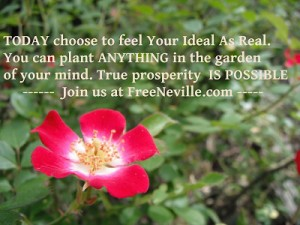 Free Neville Goddard - Feel It Real