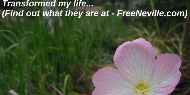 How To FEEL Financial Freedom When You Can't Because – Free Neville Goddard