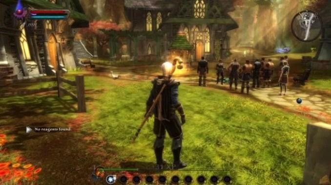 Kingdoms of Amalur Reckoning ScreenShot 1