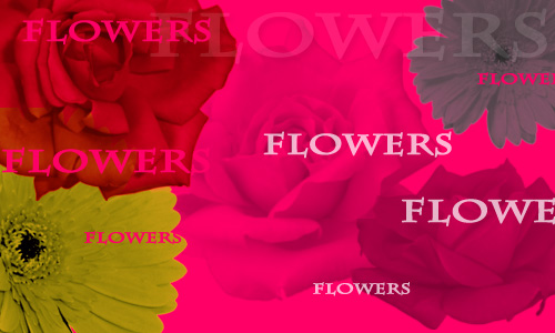 Free Flowers Brushes