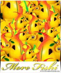 Fishi Pattern