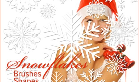 Snowflakes Brushes and Shapes