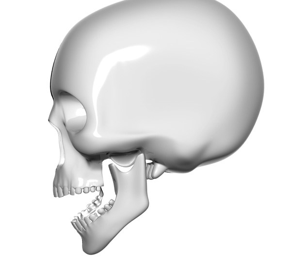 Skull Psd and Picture