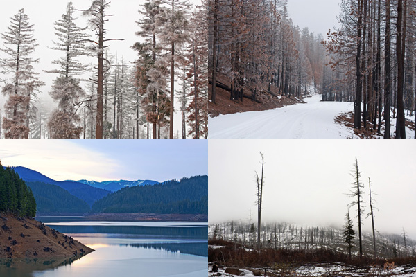 Free Winter Pictures