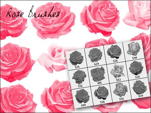 rose brush
