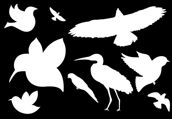 birds shapes