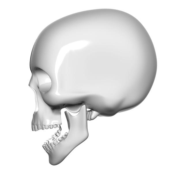 skull psd