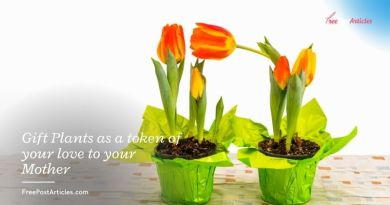 Gift Plants as a token of your love to your Mother